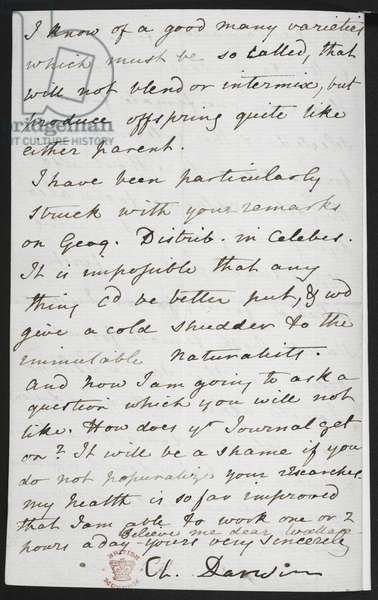 Add. MS 46434, f.61-2 Charles Darwin's natural selection letter to Alfred Russel Wallace, 1866 (ink on paper)
