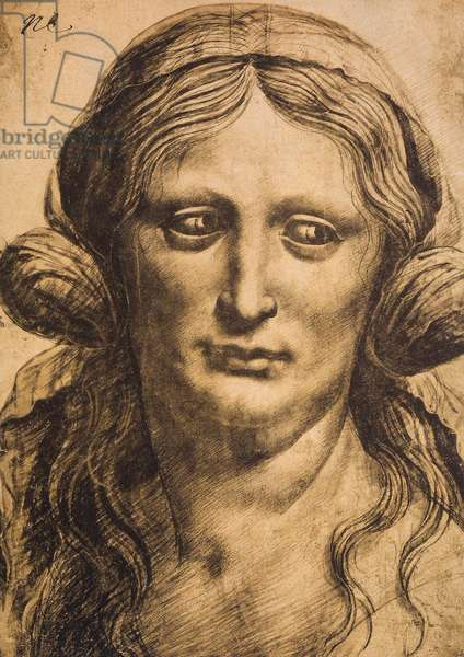 Female portrait; drawing by Leonardo da Vinci. The Louvre, Paris