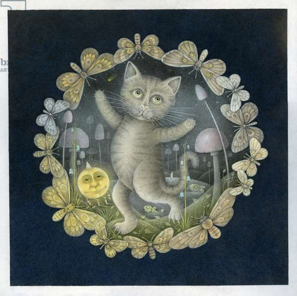 Tom Moggy and the Moon