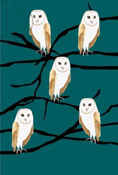 Owl on branch, 2019