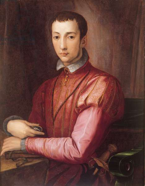 Portrait of Francesco de'Medici, 1560 (oil on panel)