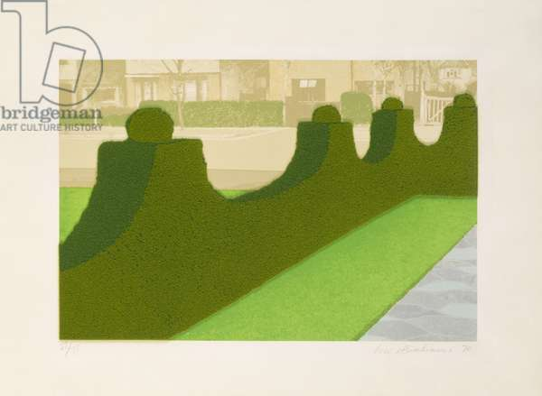 Hedge, 1970 (screenprint with flock fibre)