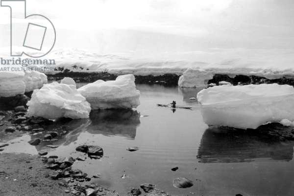 Man making kayak in the ice floe, fjord of Kangerdlugssuatsiak, Greenland, photo takne by Paul-Emile Victor, Autumn, 1936 (b/w photo)