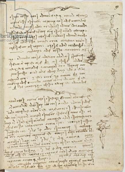 Birds Flight Code, c. 1505-06, paper manuscript, cc. 18, sheet 9 recto