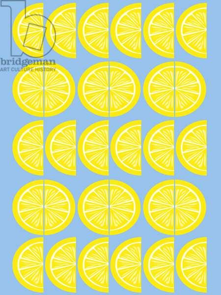 Lemon Slice, 2019