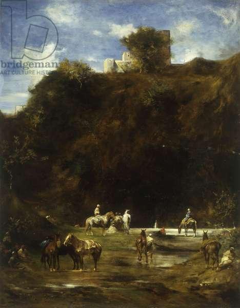 Arabs resting, 1874 (oil on panel)