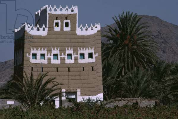 A Traditional Farmhouse, set in date palm groves and field of millet, 1984 (photo)