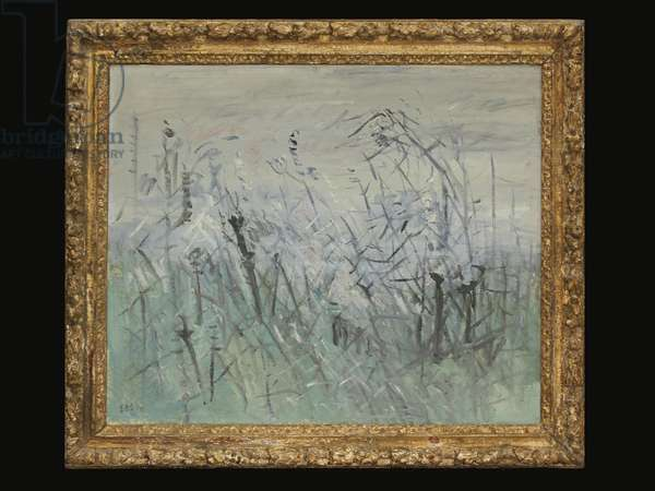 Grasses in Landscape (oil on canvas)