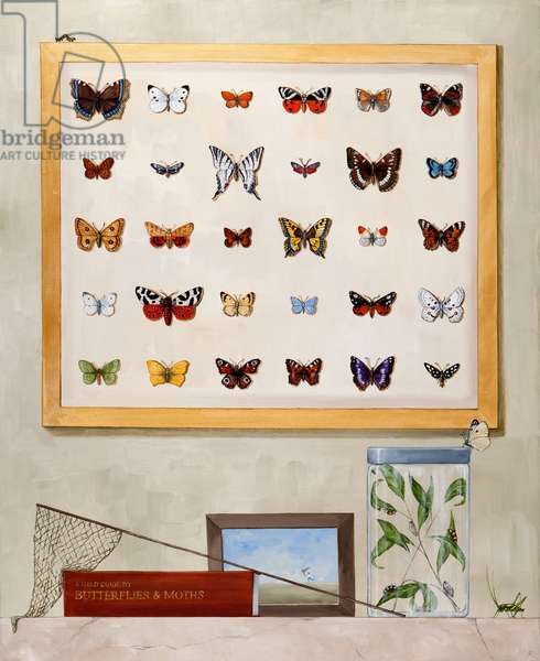 The Butterfly Collector