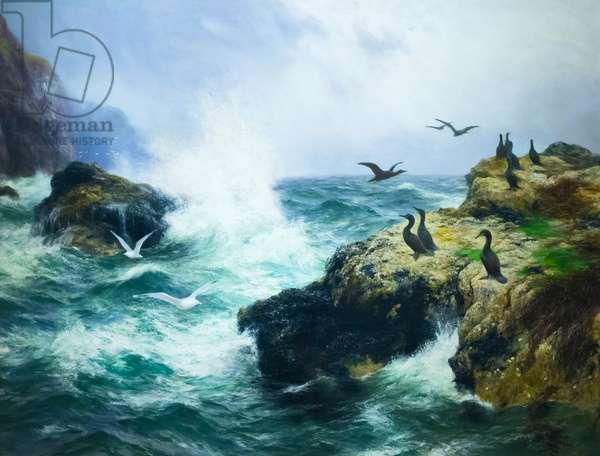 Rocky shore (oil on canvas)