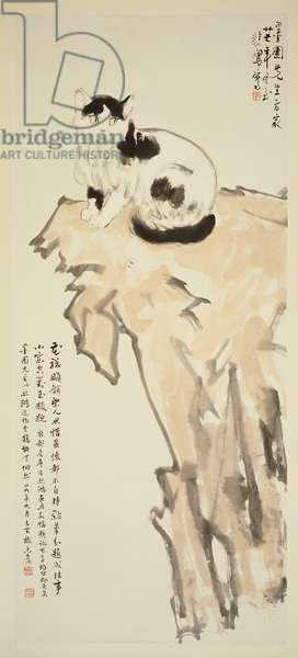 A Cat Sitting on a Rock, 1938 (hanging scroll, ink and colour on paper)