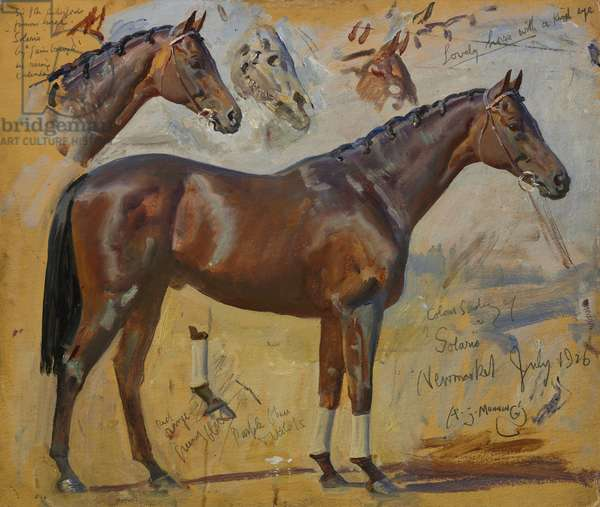 Solario, 1926 (oil on laminate cardboard)