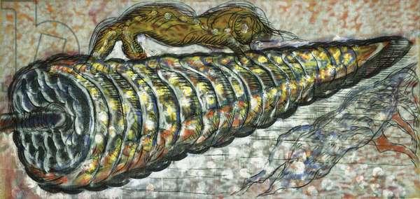 Coniferous Gem (Gemma Conifera), 1981-1982 (oil, enamel spray and charcoal on burlap)