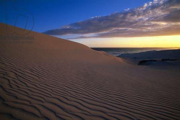 South Africa, wind-blown sand dunes at De Hoop Nature Reserve.