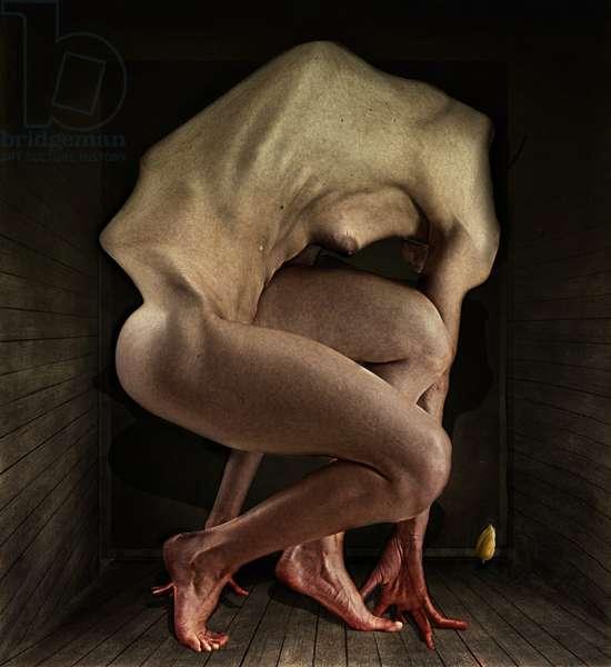 Shame, 2012 (photography)