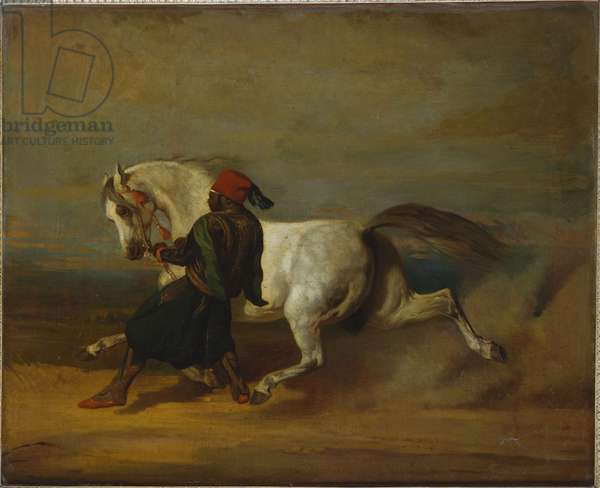The Pasha's Pride (oil on canvas)