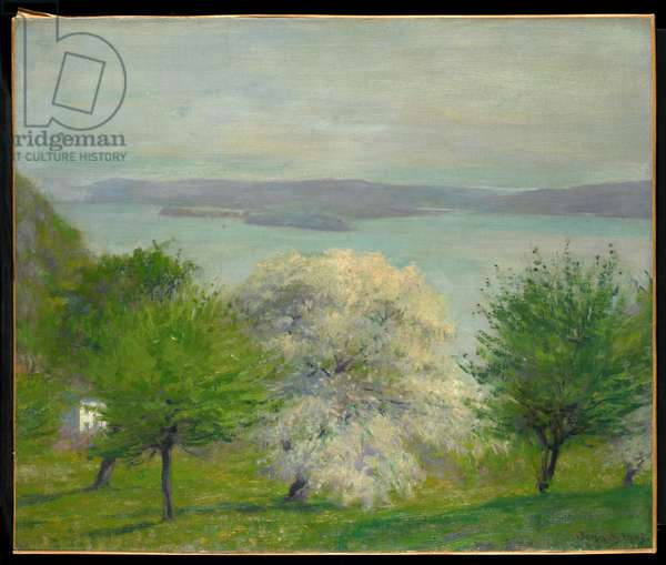 Apple Blossom, 1903 (oil on canvas)