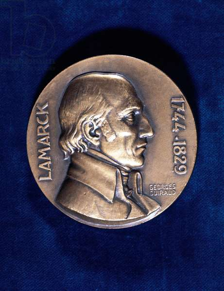 Jean Lamarck (1744-1829) French naturalist. 'Transformism' theory of evolution (inheritance of acquired characteristics). Obverse of commemorative medal.