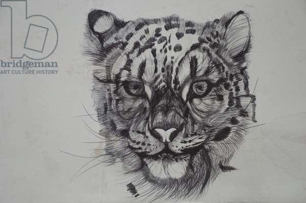 Snow Leopard,2016,(bic biro on paper)