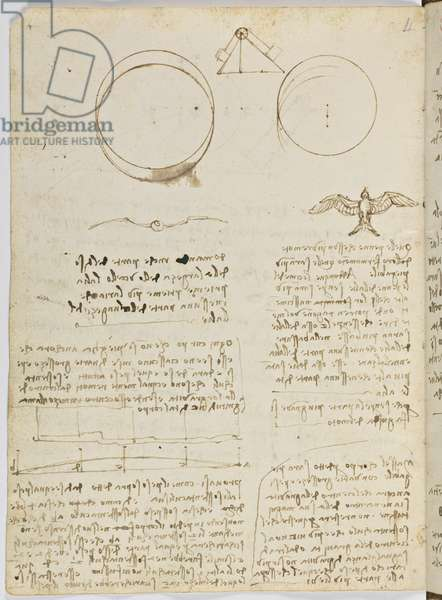 Birds Flight Code, c. 1505-06, paper manuscript, cc. 18, sheet 4 verso