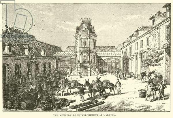 The Montebello establishment at Mareuil (engraving)