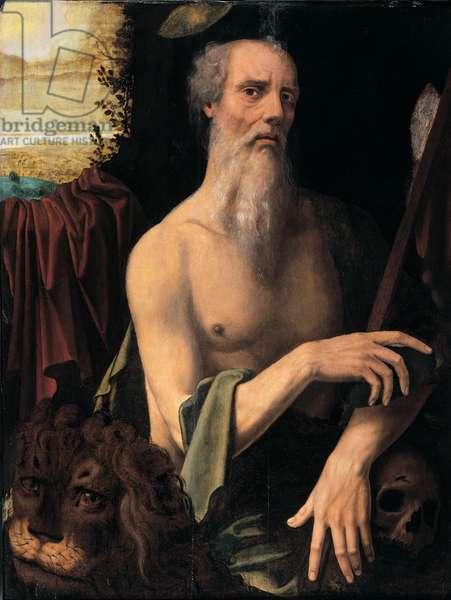 St. Jerome, 1530 (oil on canvas)