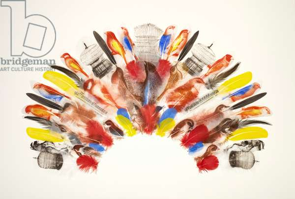 Bird-Catcher's Headdress, 2014 (printed and collaged feathers)