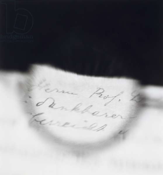 Freud's glasses--viewing a text by Jung.  A text by Jung criticizing Freud's theory of the libido is seen through Freud's glasses.  This text is thought to have finalized the historical break between Freud and Jung as master and disciple., 1998 (gelatin silver print)