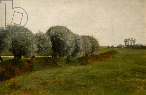 Landscape with a row of trees, 1880 (oil on canvas)