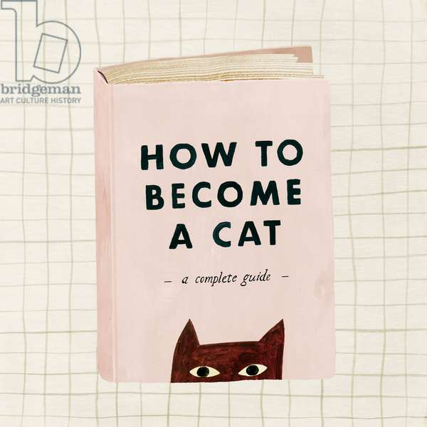 How to become a cat, 2019