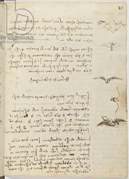Birds Flight Code, c. 1505-06, paper manuscript, cc. 18, sheet 15 recto