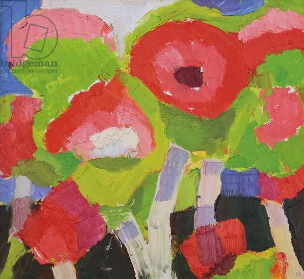 Poppy in November