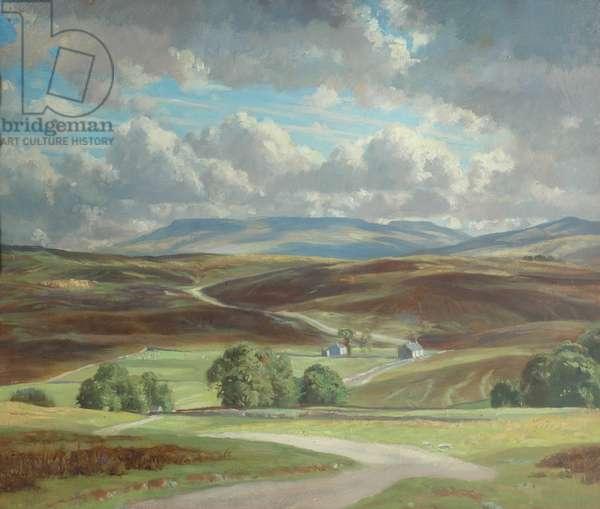 Newbiggin Moor and Wild Boar Fell (oil on canvas)
