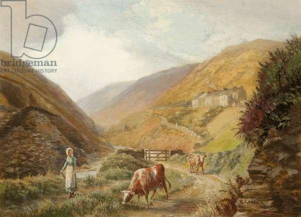 Glen Rushen, Patrick (oil on canvas)