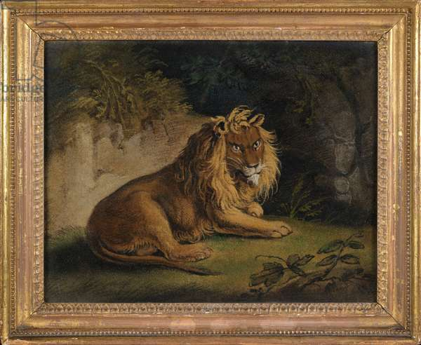A Lion in a Jungle Landscape (sand-picture on board)