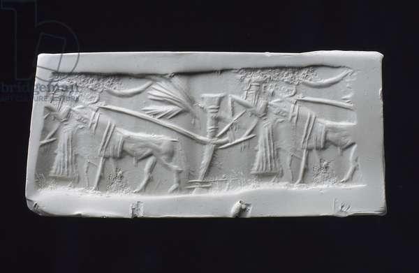 Cylinder Seal Impression, Akkadian (shell)