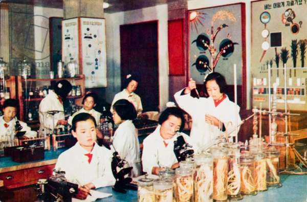 Science class in a girls' school in North Korea (photo)