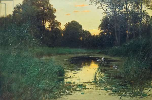 Swamp (oil on canvas)