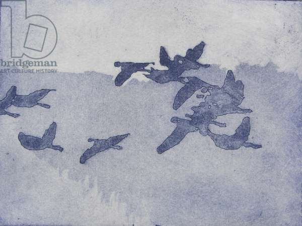 Flight, 2012 (etching)