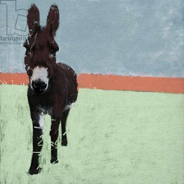 Sussex Donkey, 2019, (Mixed Media)