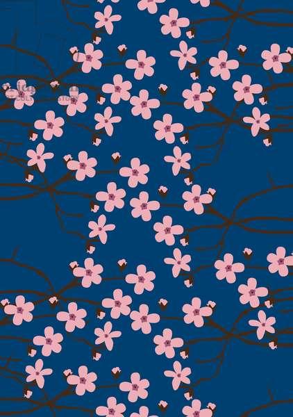 Cherry blossom,2019