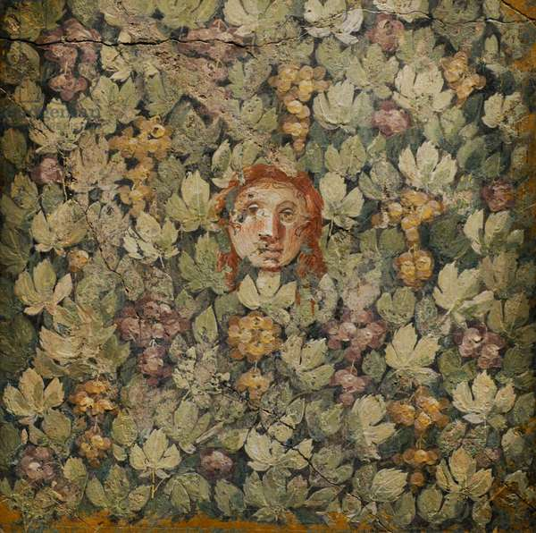 Mask on vine leaves and bunches of grapes, Fresco, 20-10 BC, from Pompeii