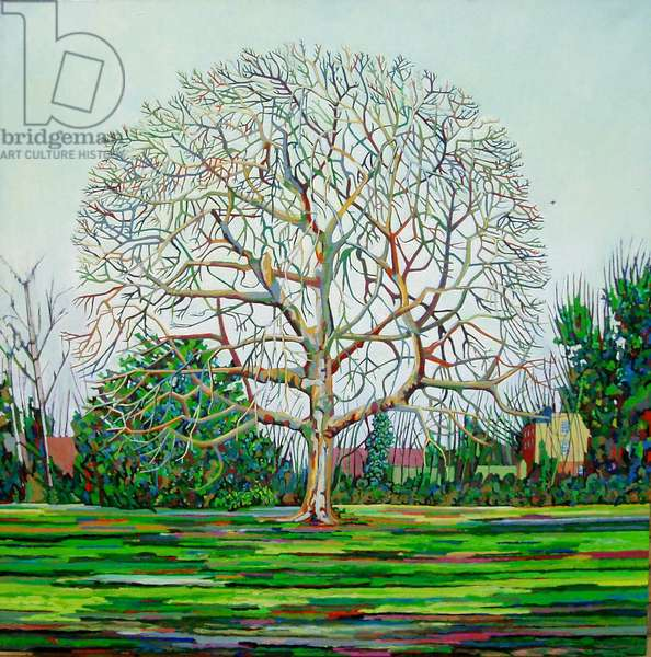Bow Tree Winter, (oil on canvas)