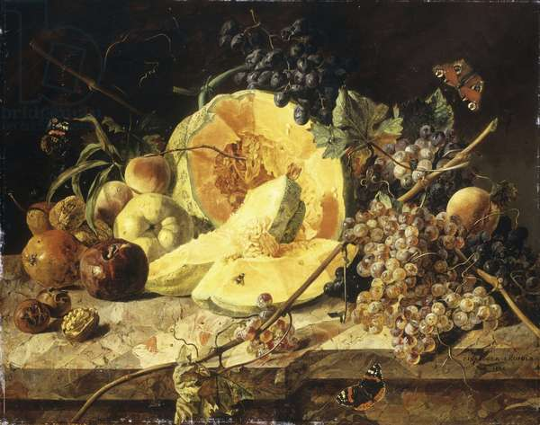 A Still Life with fruit, nuts and insects, 1835 (oil on canvas)