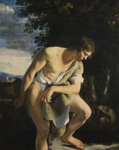 David (oil on canvas)