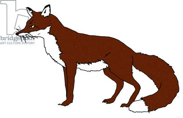 Fox,2018,(digital drawing)