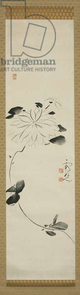 Clematis, 18th century (ink on paper, mounted as a hanging scroll)