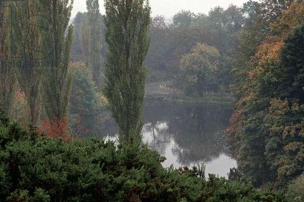Phoenix Park, Dublin, referred to By James Joyce in 'Dubliners', Ireland (photo)