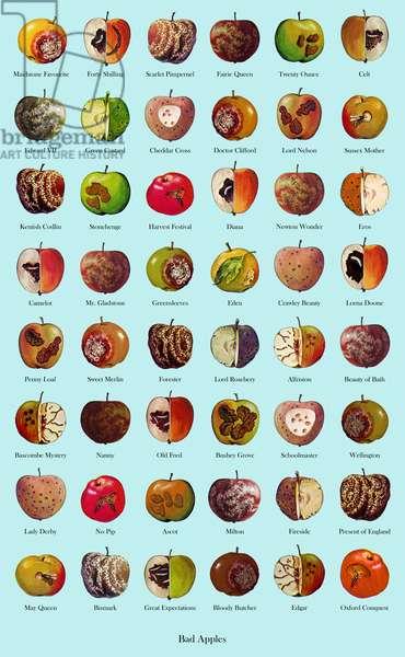 Bad Apples, 2005, (digital print)