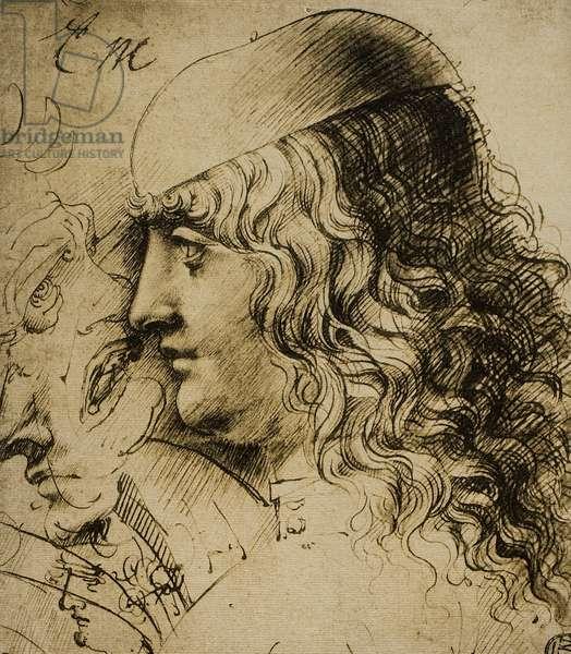 Study of a masculine head; drawing by Leonardo da Vinci. The Louvre, Paris